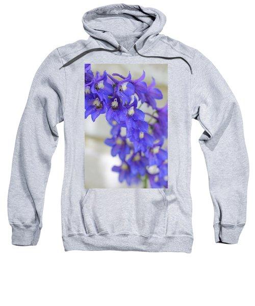 I Got The Blues Sweatshirt