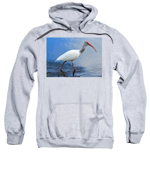 Ibis Visitor Sweatshirt by Carol Groenen