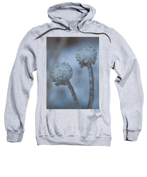 Ice-covered Winter Flowers With Blue Background Sweatshirt