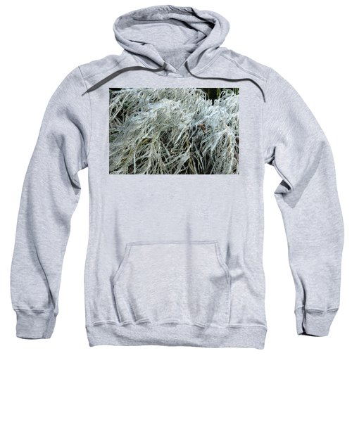 Ice On Bamboo Leaves Sweatshirt