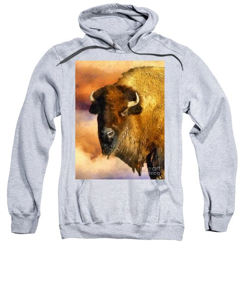 Icon Of The Plains Sweatshirt