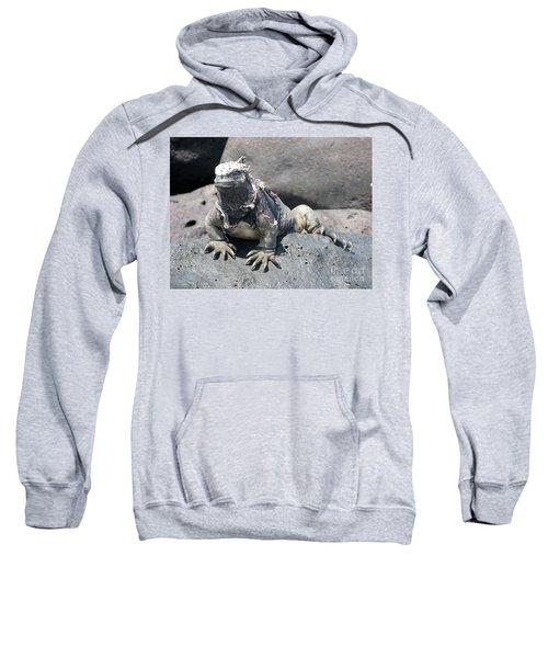 Iguana Or Prehistory Survivor Sweatshirt