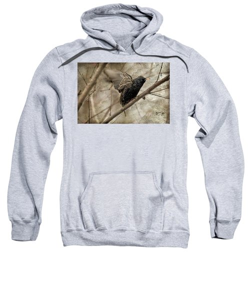 I'm Outta Here Sweatshirt by Lois Bryan