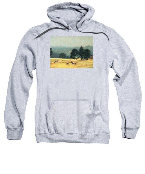 Impression Evergreen Colorado Sweatshirt
