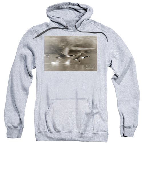 In A Blur Of Feathers Sweatshirt