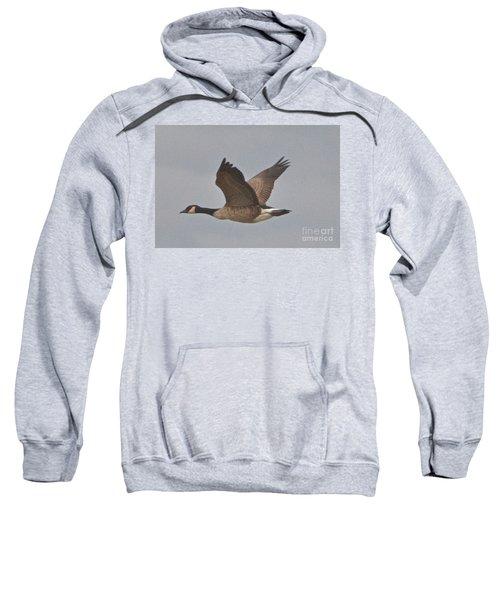 In Flight Sweatshirt