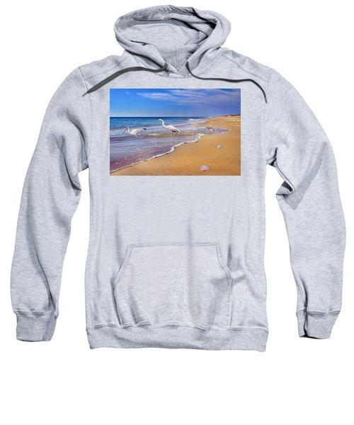 Inspiring Ibis Egret Sandpiper Starfish Sand Dollars  Sweatshirt