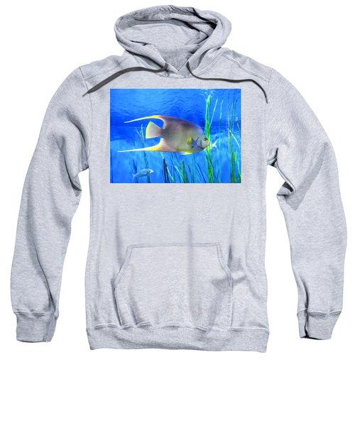 Into Blue - Tropical Fish By Sharon Cummings Sweatshirt