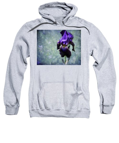 Iris - Purple And Blue - Flowers Sweatshirt