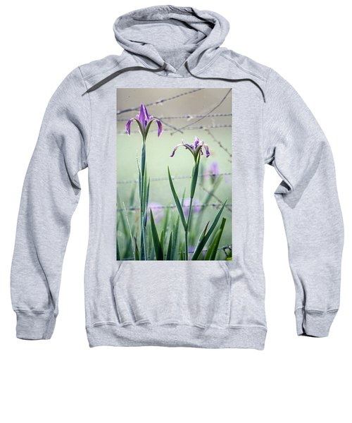 Irises2 Sweatshirt