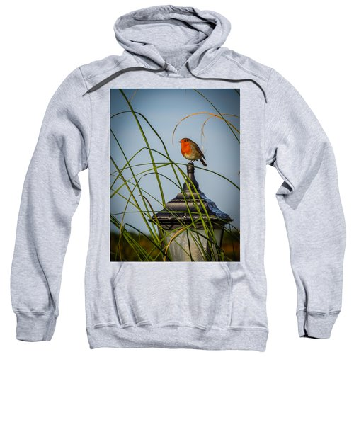 Sweatshirt featuring the photograph Irish Robin Perched On Garden Lamp by James Truett