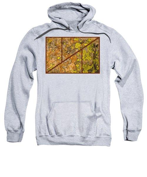 Iron And Lichen Sweatshirt