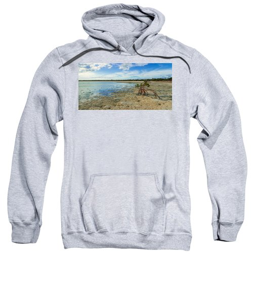 Isolated Sweatshirt