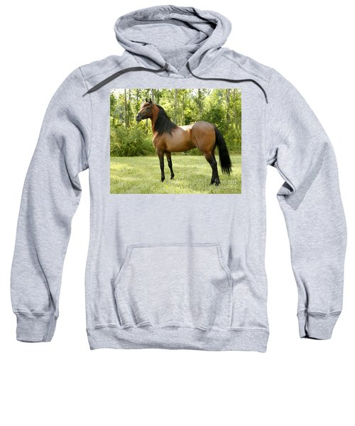 I've Got My Eye On You Sweatshirt