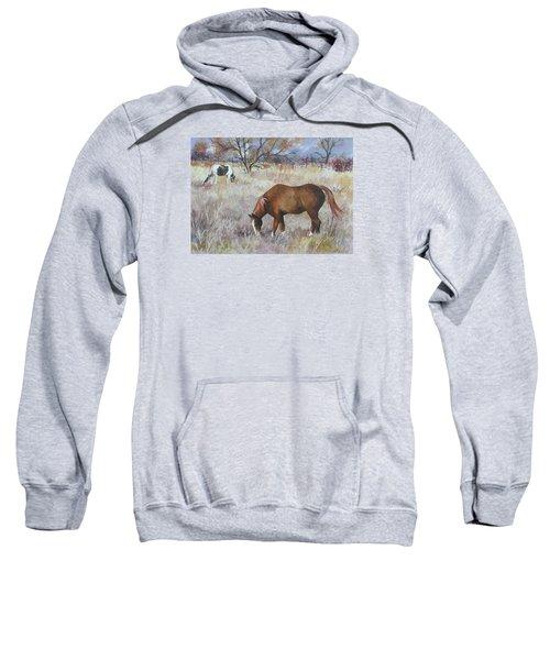 Jill's Horses On A November Day Sweatshirt