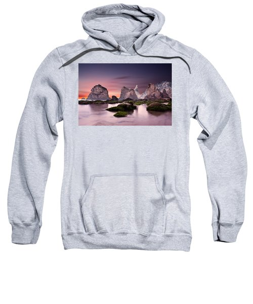 Jurassic Sweatshirt