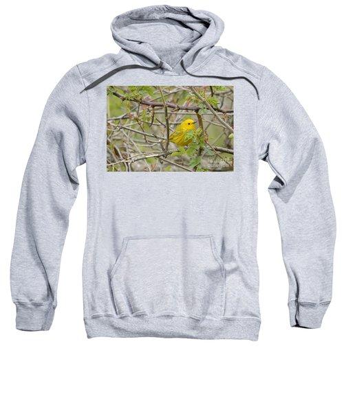 Just Brightening Your Day Sweatshirt