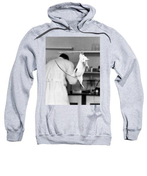 Just Hanging Lab Rat Sweatshirt