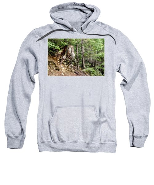 Just Hanging On Old Growth Forest Stump Sweatshirt