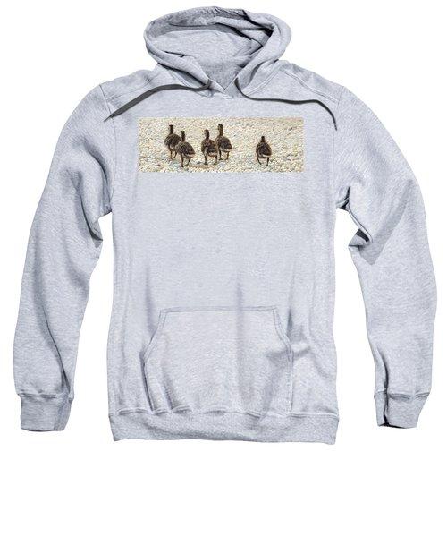 On The Shore Sweatshirt