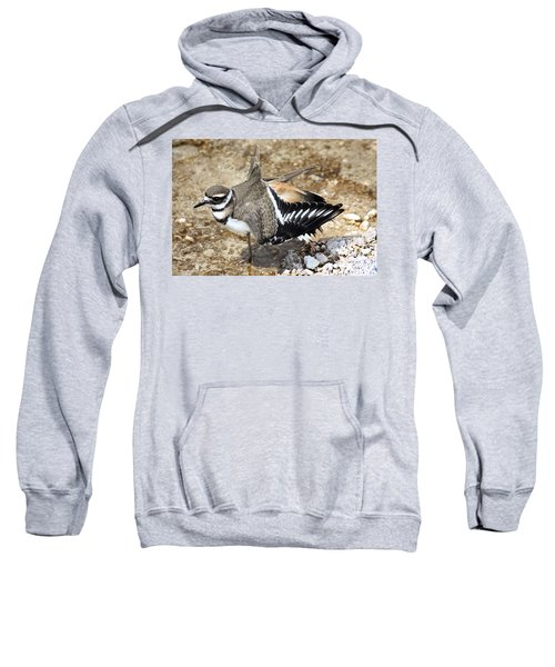 Killdeer Fakeout Sweatshirt