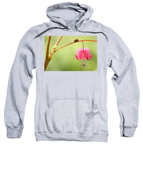 Ladybug And Bleeding Heart Flower Sweatshirt
