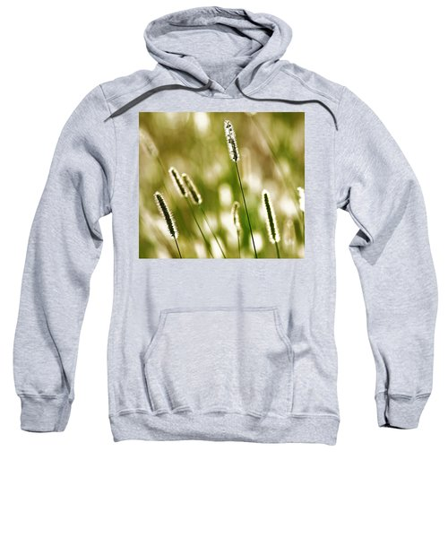 Light Play Sweatshirt