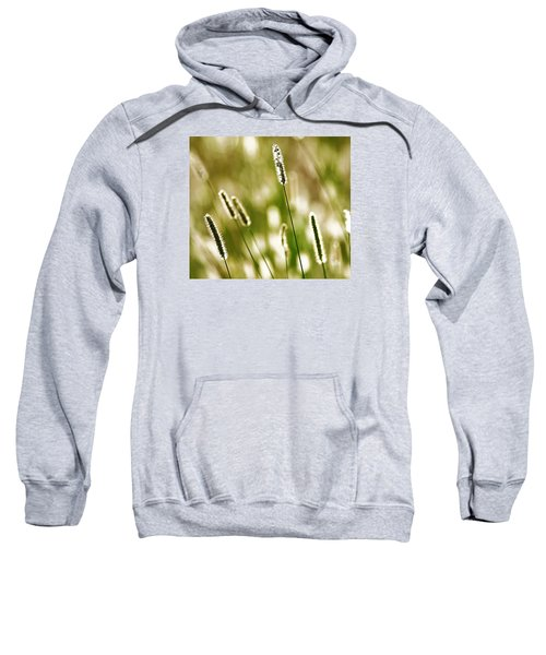 Light Play Sweatshirt