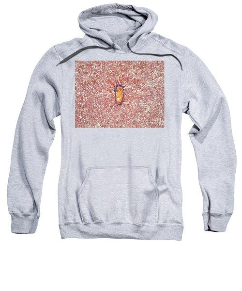 Liver Tissue Of A Cat Lm Sweatshirt