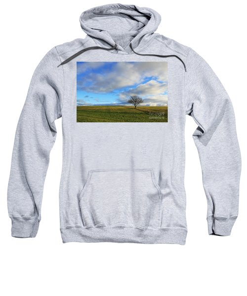 Lone Tree At Epsom Downs Uk Sweatshirt