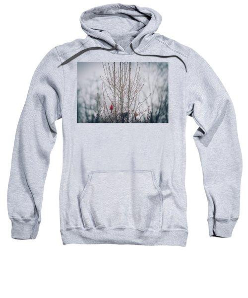 Love Birds Sweatshirt