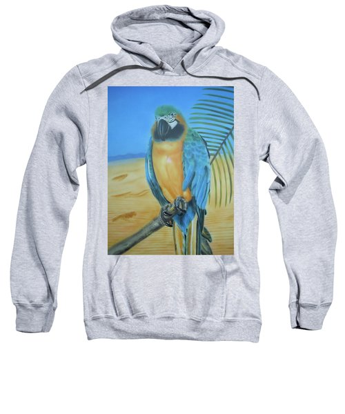 Macaw On A Limb Sweatshirt