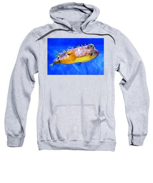 Magic Puffer - Fish Art By Sharon Cummings Sweatshirt