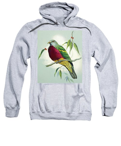 Magnificent Fruit Pigeon Sweatshirt by Bert Illoss
