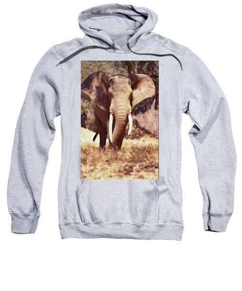 Mana Pools Elephant Sweatshirt