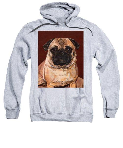 Maxx Sweatshirt