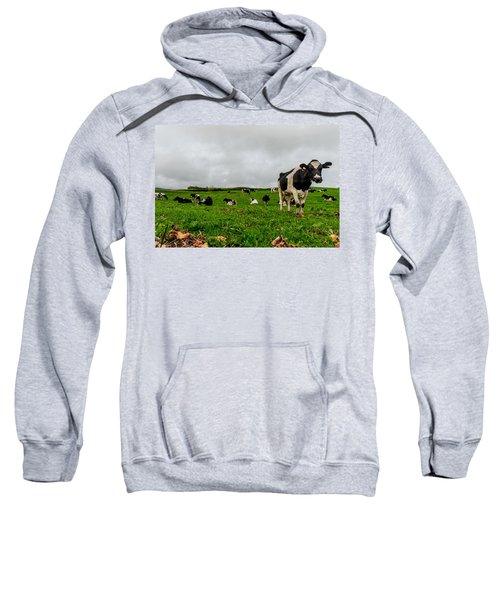Sweatshirt featuring the photograph Milk Nature Nose by Joseph Amaral