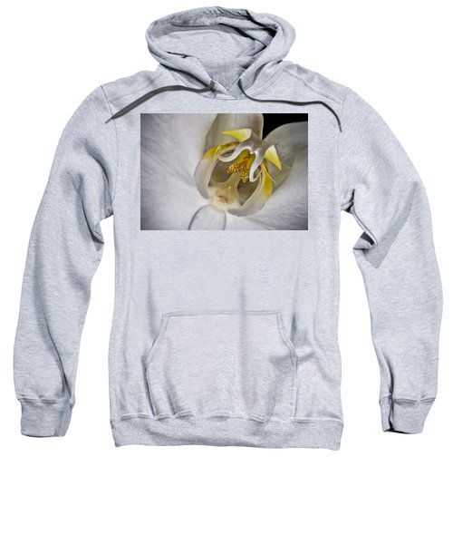 Moth Orchid Inverted Sweatshirt