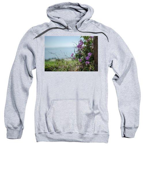 Mount Of Beatitudes Sweatshirt