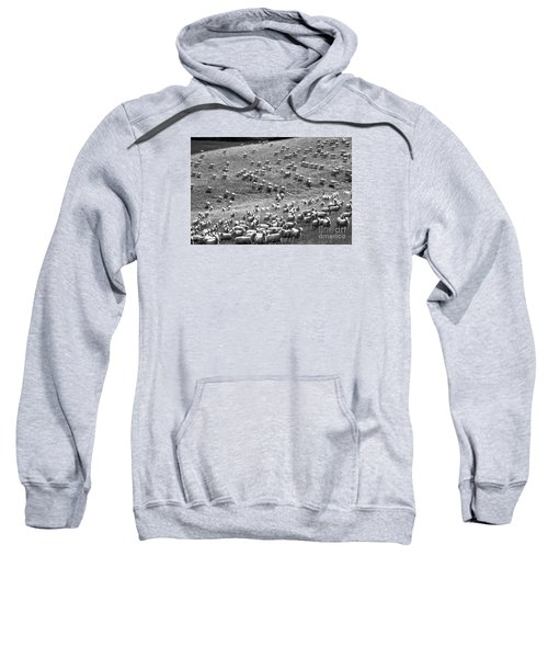 Sweatshirt featuring the photograph Moving Hillside by Nareeta Martin