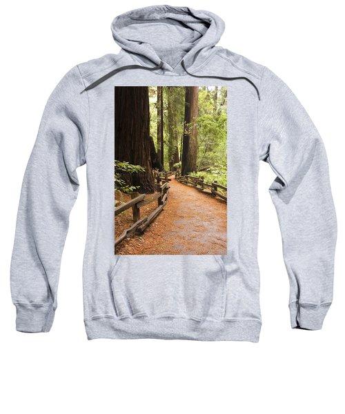 Muir Woods Trail Sweatshirt