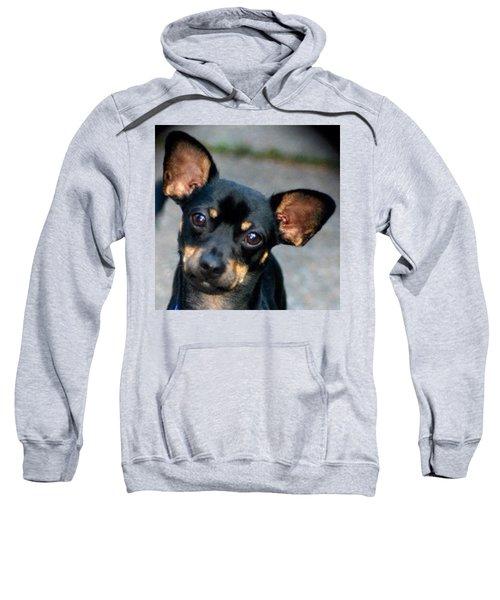 My Adorable Pepper Pup Sweatshirt