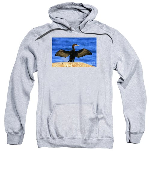 Ocean Dreams Sweatshirt