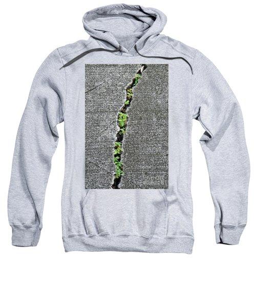 Nature Always Wins Sweatshirt