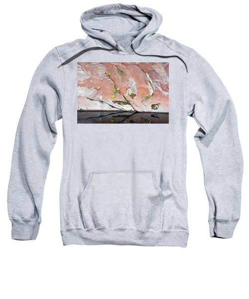 Nature's Abstract Sweatshirt