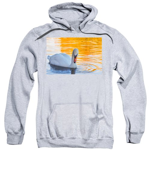 Nature's Grace Sweatshirt