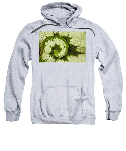 Natures Spiral Sweatshirt