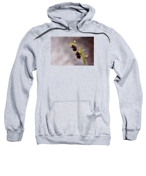 Natures Trick - Mimicry Sweatshirt