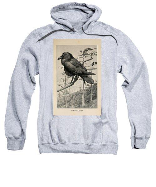 Northern Raven Sweatshirt