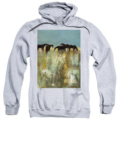 Not A Cloud In The Sky Sweatshirt